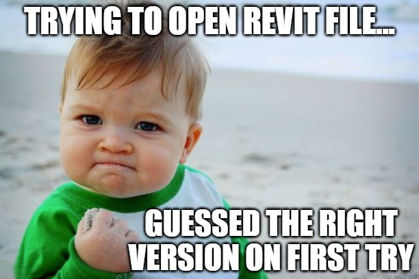engipedia-meme-yes-kid-guessed-revit-version